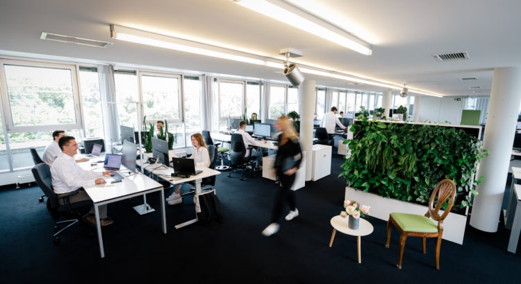 Belebtes Büro in der Webdesign Agentur ECONSOR