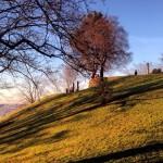 Aussichtsterrasse im Weißenburgpark