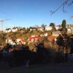 Blick vom Teehaus