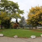 Der ungenutzte Villagarten (Ostseite)