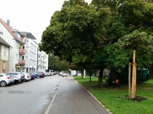 Bismarckstraße Richtung Friedenspark in Heilbronn