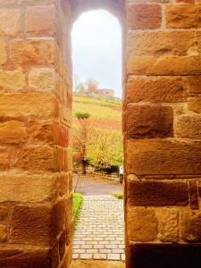 Blick auf die Burgruine Weibertreu