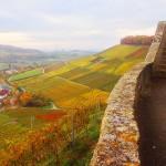 Der Ausblick nach Heilbronn