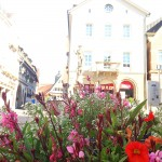 Blumen am Besigheimer Marktplatz