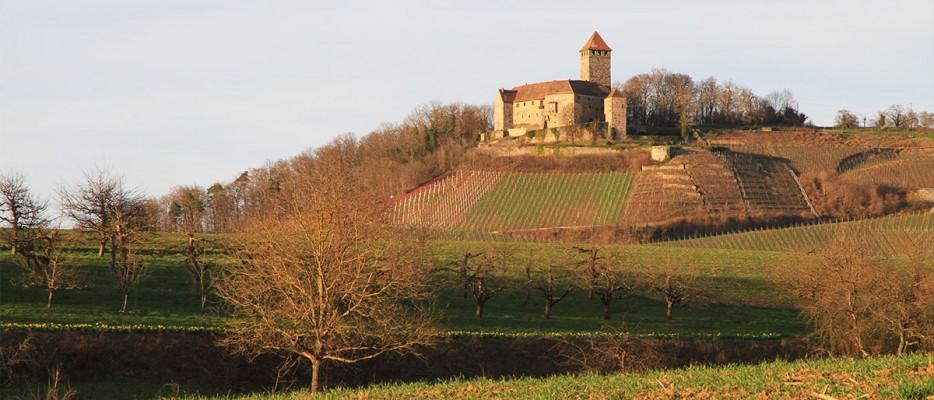 Burg auf dem Lichtenberg im Herbst