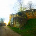 Der Eingang der Burgruine