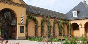 Der Heidelberger Zoo – ein Erlebnis für Groß und Klein