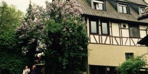 Ausflug ins Siebenmühlental in Leinfelden-Echterdingen